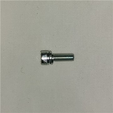 Carb Body Screws SS M4 x 10